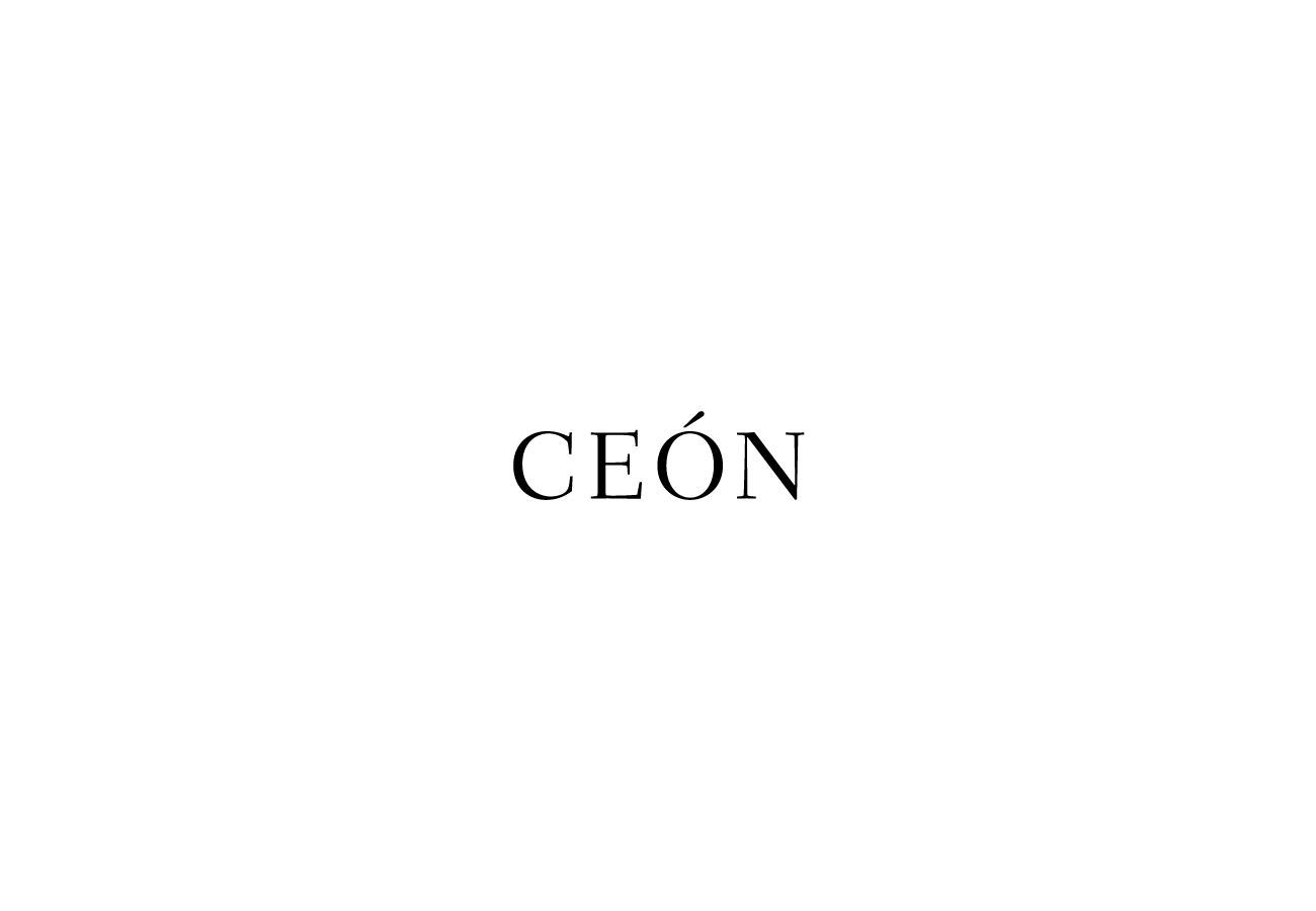 ceon logo